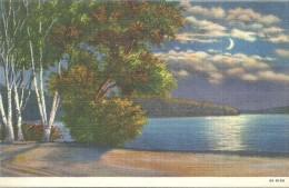 ETATS UNIS - UNITED STATES OF AMERICA - WISCONSIN - Moonlingt On The Lake Near Tourist Camp Site Lake Geneva - Etats-Unis