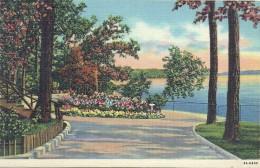 ETATS UNIS - UNITED STATES OF AMERICA - WISCONSIN -  Scene At Olivet Camp Lake Geneva - Etats-Unis
