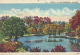 ETATS UNIS - UNITED STATES OF AMERICA - ILLINOIS - Roosevelt Park Waukegan - Etats-Unis