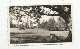 Cp , 87 , MAGNAC LAVAL , Vue Générale Du Château , Vierge , Coll. : R. Toulisse , Ed : La Cigogne , N° 87.089.03. - Autres Communes
