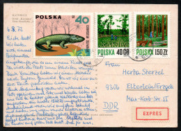 6960 - Alte Ansichtskarte - Katowice - Express 1972 - Briefe U. Dokumente