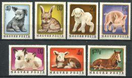 177 HONGRIE 1974 - Yvert 2404/10 - Bebes Animaux Poulain Cochon Chat Veau - Neuf ** (MNH) Sans Charniere