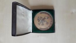 Medaille Ministerie Van De Vlaamse Gemeenschap Joseph Lerouge 44 Jaar Acteur Toneelvrienden Aarsele 2002 - Other Collections