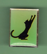 CHAT NOIR *** 0075 - Animaux