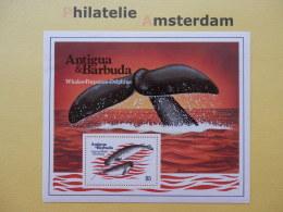 Antigua & Barbuda 1983, FAUNA WHALES DOLPHINS WALE DELPHINE BALEINES DELFINI MARINE MAMMALS: Mi 718, Bl. 71, ** - Whales