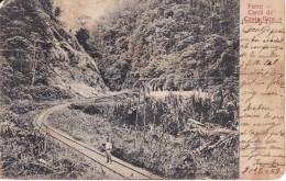 POSTAL DE COSTA RICA DE EL FERROCARRIL DEL AÑO 1909 (N. RUDD) (COSTA RICA) VIA DEL TREN - Costa Rica