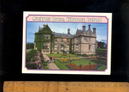 KILLARNEY Kerry : The Muchross House - Kerry