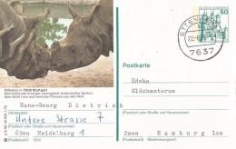 DBR - Postal Stationary - Entier 1979 - Rhino -zoo Stuttgard