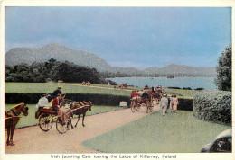 Jaunting Car, Lakes Of Killarney, Kerry, Ireland Postcard Unposted - Kerry