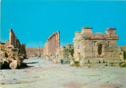 Jerash, Jordan Postcard Unposted