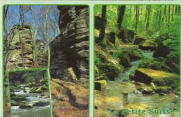 LUSSEMBURGO - LUXEMBOURG - 2001 - 21F Ceca 1951-2001 + Flamme - Petite Suisse Luxembourgeoise - Multivues - Viaggiata... - Echternach