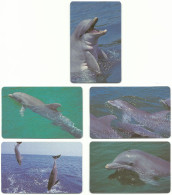 Zambia - Zambia Telecom - Complete Set 5 Dolphins - 100 Units