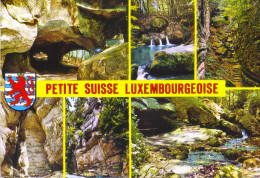 LUSSEMBURGO - LUXEMBOURG - 1990 - 12F Europa Cept + Flamme Nature Et Culture - Echternach - Petite Suisse Luxembourge... - Echternach