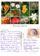 Wild Flowers, Bermuda Postcard Posted 2009 Stamp - Bermudes