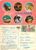 Multiview, Jamaica Postcard Posted 1975 Stamp - Jamaica