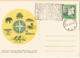 Poland - Postal Stationary - Park , Elephant 1966 - Olifanten
