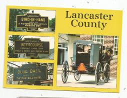 Cp , ETATS UNIS , Pennsylvania , LANCASTER COUNTY , Multi Vues , Amish Country , Vierge , Ed : Scene - Ics - Lancaster