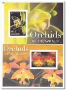 Lesotho 2007, Postfris MNH, Flowers, Orchids - Lesotho (1966-...)