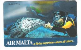 Malta - Malte - Tauchen - Taucher - Diving - Fisch - Fish