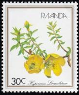 RWANDA - Scott #1084 Hypericum Lanceolatum / Mint NG Stamp - Rwanda
