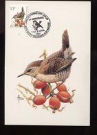Belgie Buzin Vogels Birds 2449 11fr Maximumkaart RR 7/4/2001 St Georges Sur Meuse - 1985-.. Birds (Buzin)