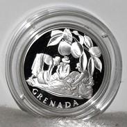 Proof/PP Silber/Silver Medal/Medaille UN/UNO Zu Ehren Von/Tribute To Grenada, 1978 - Münzen