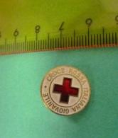CRI Croce Rossa Italiana Giovanile Pin Lorioli - Associazioni