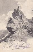 Lenzerheide - Partie Am Weg Zum Lenzhorn - 1903   (P4-10402) - GR Grisons