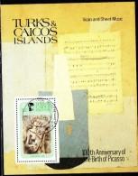 BF153 -  TURKS CAICOS , BF N. 32 Usato . Picasso - Turks E Caicos