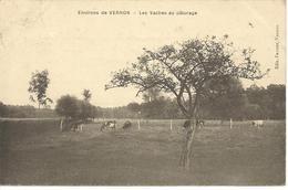 Environs De Vernon - Les Vaches Au Pâturage - Vernon