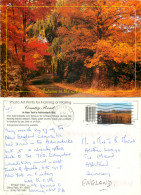 Autumn, Adirondack Mountains, New York, United States US Postcard Posted 2001 Stamp - Adirondack
