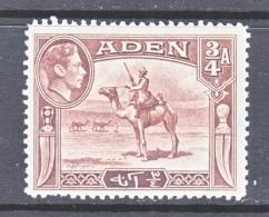ADEN 17   *   CAMEL  SOLDIER - Aden (1854-1963)