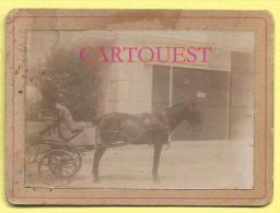 Photo Ancienne Collée Sur Carton  ATTELAGE Avec Cheval  CALECHE - Photos