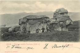 E-16 821 : ROUMANIE  BABETE STANCI PE MUNTELE CARAIMAN - Roemenië