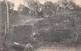 THEME MAIS / CORN - VIETNAM - Annam - Ecrans Pour Le Séchage Du Maïs En Forêt - Vietnam