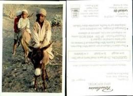 18298-image-818    Poulain  Mini Reporters Sultanat D'oman Image N ° 42 - Poulain