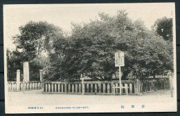 Japan Shogunbai Plumtree Postcard - Japan
