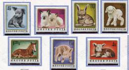 Hongrie **  N° 2404 à 2410 - Chiot, Chatons, Laperaux, Agneau, Poulain, Veau, Porcelet -