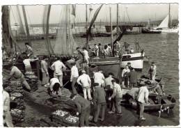 CPSM  - 29 -DOUARNENEZ - Arrivage De La Sardine - - Douarnenez
