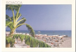 Italy, SCIACCA, (Sicilia), The Beach, Used Postcard [18986] - Unclassified