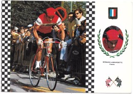 CYCLISTE - BERNARD LABOURDETTE - Cyclisme