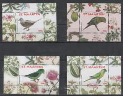 ST. MAARTEN , 2016, MNH, BIRDS, PARROTS, 4 S/SHEETS, NOS. 1-4 - Parrots