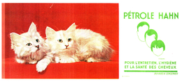 Che PH/Buvard Cheveux Pétrole Hahn  (N= 2) - Buvards, Protège-cahiers Illustrés