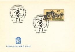 "K9050 - Czechoslovakia (1981) Toplolcany 1: European Junior Championships In Table Tennis ""MEJ 81"""