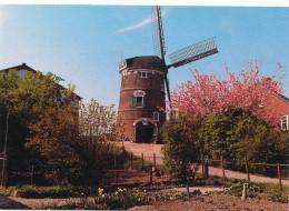 MOLEN / MOULIN / WINDMILL / NEDERLAND / LIENDEN - Moulins à Vent
