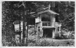 CPSM - SENONES (88) - Vue De La Chapelle De Malfosse En 1958 - Senones