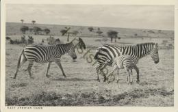 East African Game - Zebra (Nairobi) (KST 12.649 - Kenya