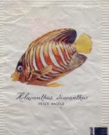 ITALIA : Suikerzakje/Sachet De Sucre/Sugar Package: VISSEN,POISSONS,FISHES, ## HOLACANTHUS DIACANTHUS – Pesce Angelo ## - Sucres