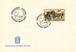 K9072 - Czechoslovakia (1981) Trencianske Teplice: International Chess Tournament - Scacchi