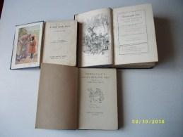Lot De 3 Livres En Anglais - Non Classificati